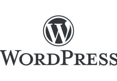 10 Лучших зарубежных сайтов, использующих WordPress